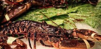 comer-en-cabo-verde