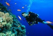buceo-cabo-verde